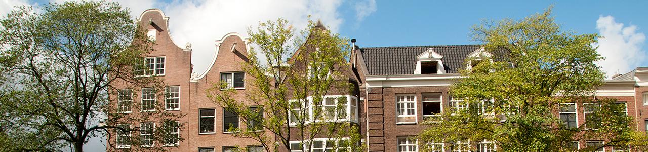 The Japan-Netherlands Society